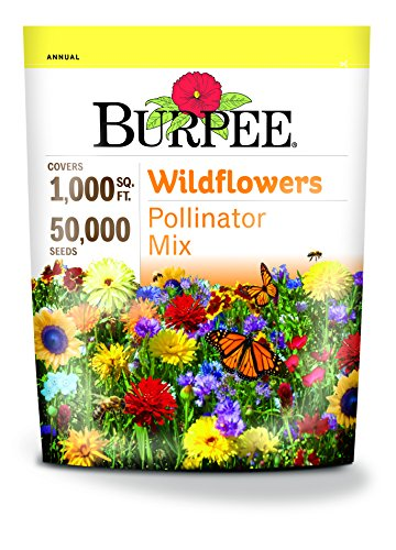 Burpee Wildflower Seed Mix for Pollinators