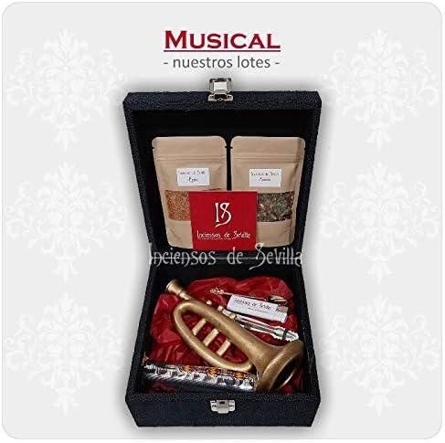 Pack Regalo Incienso Cofrade Musical: Amazon.es: Hogar