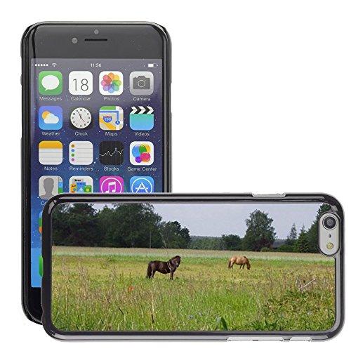 """Bild Hart Handy Schwarz Schutz Case Cover Schale Etui // M00134154 Paddock Horses Pasture Kupplung // Apple iPhone 6 PLUS 5.5"""""""