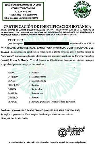 Luna Sundara - 100 g. Palo Santo Smudging Sticks from Peru Sustainably Harvested Quality Hand Picked - (Approximately 10-15 Sticks)