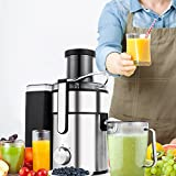 Juice Extractor 80MM Wide Mouth Masticating Juicer for Fruit and Vegetables Juicer Machine with Juice Jug, 2 Speed Setting Stainless Steel