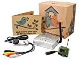 Wireless Bird House Camera with Night Vision, Receiver and USB Connector- Record to your PC, Motion Detection, 2.4GHz, Garden Wildlife Camera