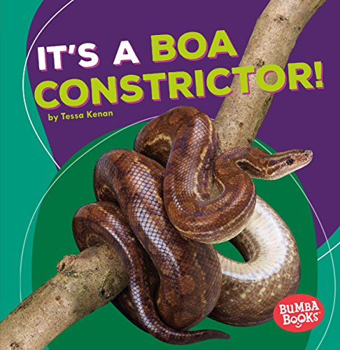It's a Boa Constrictor! (Bumba Books - Rain Forest Animals)