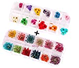 XICHEN® 36 Starry plus 36 five flower flower three-dimensional applique 3d nail stickers nail supplies dried flowers 2* 12 color (Starry and five flower)
