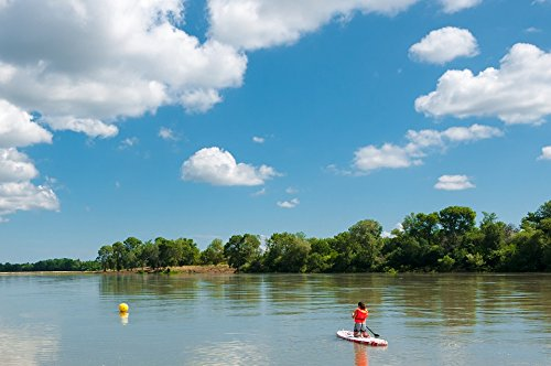 TED POSTER Oars Water Rhône Paddle Beaucaire France River Poster Print 24x36 Decal (Laminated Oar)