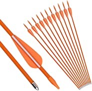 NIKA ARCHERY 24 26 28 30 Fiberglass Arrows for Youth Practise Recurvebow Compound Bow Shooting