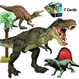 Tyrannosaurus Rex, BooTaa Large T Rex Dinosaur Toys,Jurassic World with Realistic Design, Action Figures for Gift,Boys, Game,Party,Toddler, 3/4/5/6 Years Old Kids, Playset, Inlcuded 7pcs Dinosaur Card