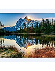 TOCARE DIY Acrylic Paint by Numbers for Adults On Canvas Landscape Nature Scenery Home Wall Art Decor Tranquil Mountain Lake