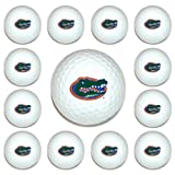 NCAA Florida 12-Pack Team Golf Balls, Outdoor Stuffs