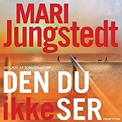Den du ikke ser [This You Do Not See]