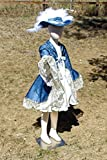 Girls 6-8 4 piece Blue Musketeer complete costume
