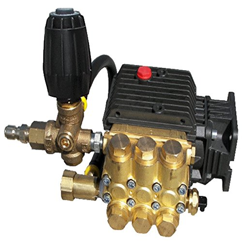 General Pump SLPTP2530-401 Pressure Washer Pump 2500PSI, 3/4'' Hollow Shaft, with Unloader by General Pump