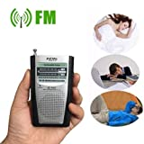 DoComer(TM) Portable Pocket Radio Fm Am Player Mini Silver Antenna Plastic Built In Speakers
