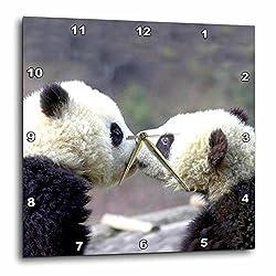 3drose Baby Pandas Wall Clock, 10 by 10-Inch