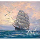 The high quality polyster Canvas of oil painting 'Seascape of a Sailing Ship and Sea Gulls' ,size: 24x26 inch / 61x66 cm ,this Best Price Art Decorative Canvas Prints is fit for Nursery artwork and Home artwork and Gifts