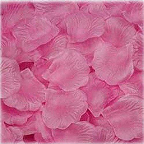 2000pcs DIY Wedding Party Confetti Decor (Multicolor) - 5