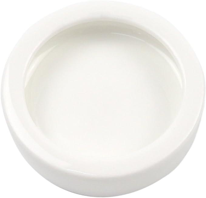 OMEM Worm Dish Mini Cuenco de la Comida de Reptiles cerámica Hecho