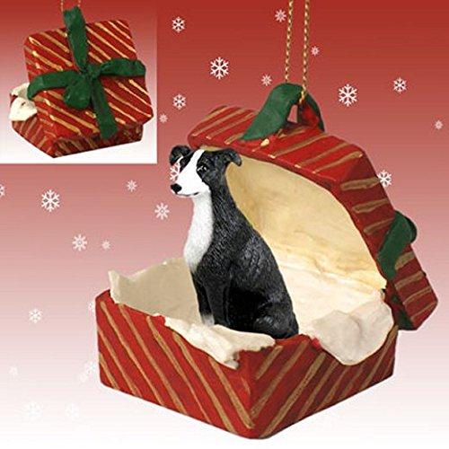 Black & White Greyhound Red Gift Box