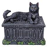 Black Cat Tarot Box Fortunes Watcher Wiccan Pentagram Collection Mystic