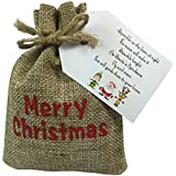 Christmas Eve Box Fillers For Children - Reindeer Dust Reindeer Food in a Merry Christmas Gift Bag by Libbys Market Place by Libbys Market Place