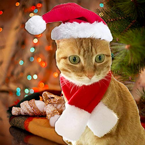 Goldmik Christmas Cat Costumes Santa Hat with Cloak Scarf Sets for Kitten Puppy Small Pets Accessories