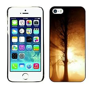 iPhone 5 / 5S - Metal de aluminio y de plástico duro Caja del teléfono - Negro - Halloween Haunted Forrest