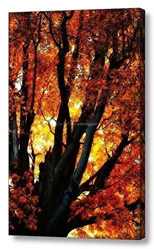 Autumn Elegy / Vibrant Display / Ready to Hang Wall Art / Fine Art Photography ~ CANVAS WRAP PRINT - Fall Foliage Decor Wrap