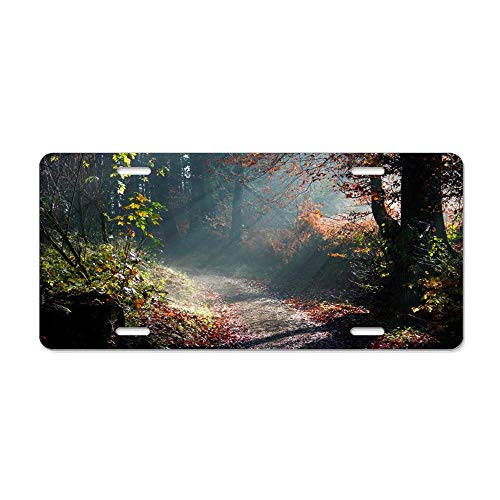 MilitaryAutoTag Sunlit Forest Path Customized Auto Car Front Tag Aluminum Metal License Plate Cover Great Vanity Gift 12 x 6 ()
