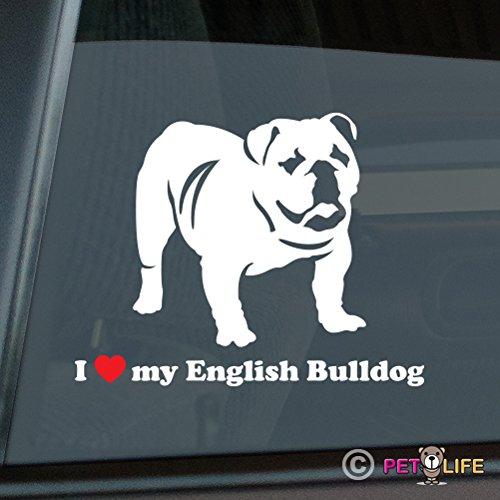 english bulldog vinyl car sticker - 4