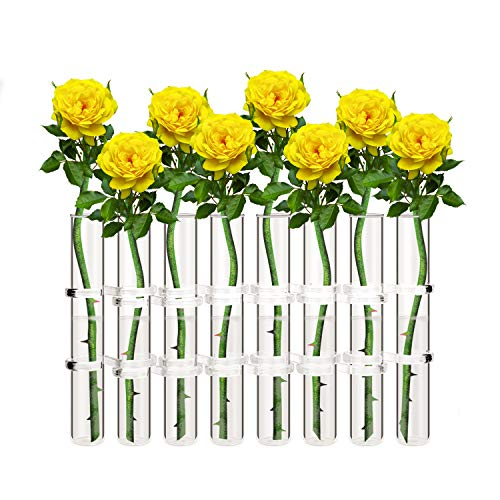 Glass Flower Tubes - Ivolador 8 Crystal Glass Test Tube Vase Flower Pots for Hydroponic Plants Home Garden Decoration