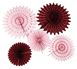 Burgundy Pink Bridal Shower Decorations Pinwheels Paper Fan 7pcs Burgundy Cream Pink Tissue Paper Fans Tissue Paper Flower Burgundy Birthday Decorations Valentines Bachelorette Party Decorations