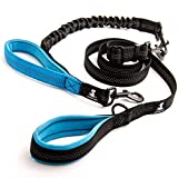 SparklyPets Adjustable Leash and 3 in 1 Shock-Absorbing Bungee Extension Set - Heavy Duty Dog Leash for Medium and Large Breeds Made from Durable Nylon - Reduces Pulling Shocks and Prevents Injuries