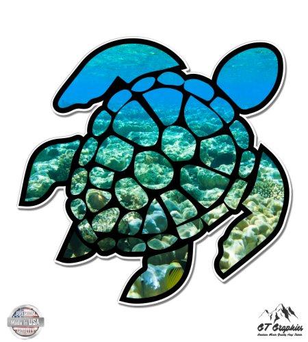 GT Graphics Sea Turtle Underwater Coral Reef - 5