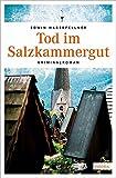 Tod im Salzkammergut (Michael Schröck, Band 4)