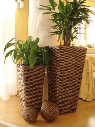 2er Set Wasserhyazinthe Blumenkübel Übertöpfe Pflanzkübel ...