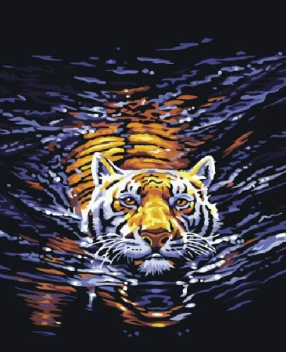 Diy home decor digital canvas oil painting by number kits Water Tiger 1620 inch.