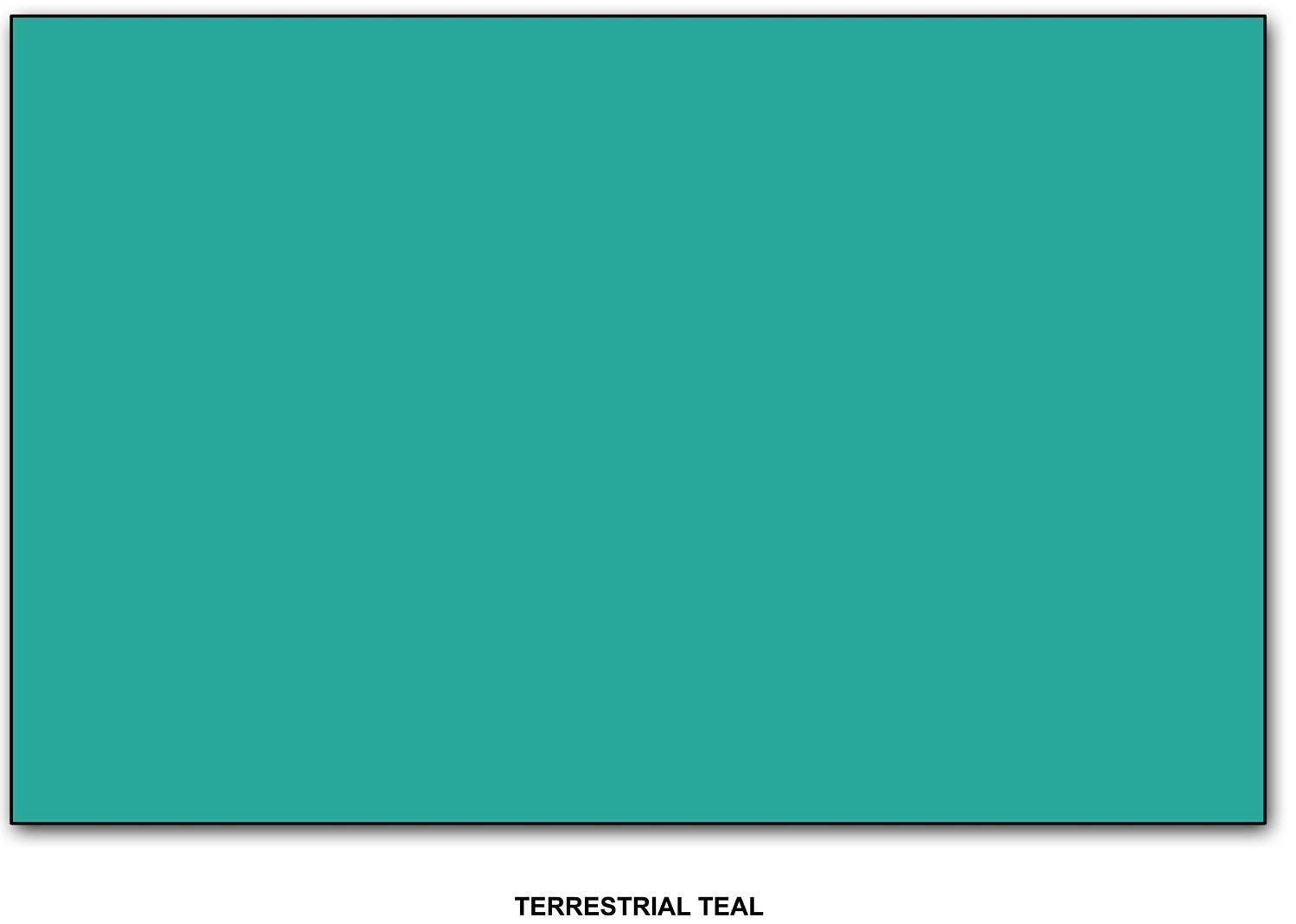 Terrestrial Teal - Neenah Astrobrights Premium Color Paper, 24 lb, 11 x 17 Inches, 100 Sheets per pack