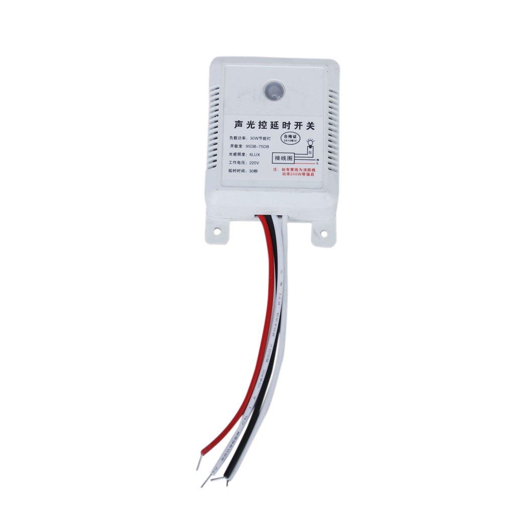 Sonido Luz Demora Sensor Control Lámpara Interruptor Pared Seguridad AC 220V Generic STK0114008893