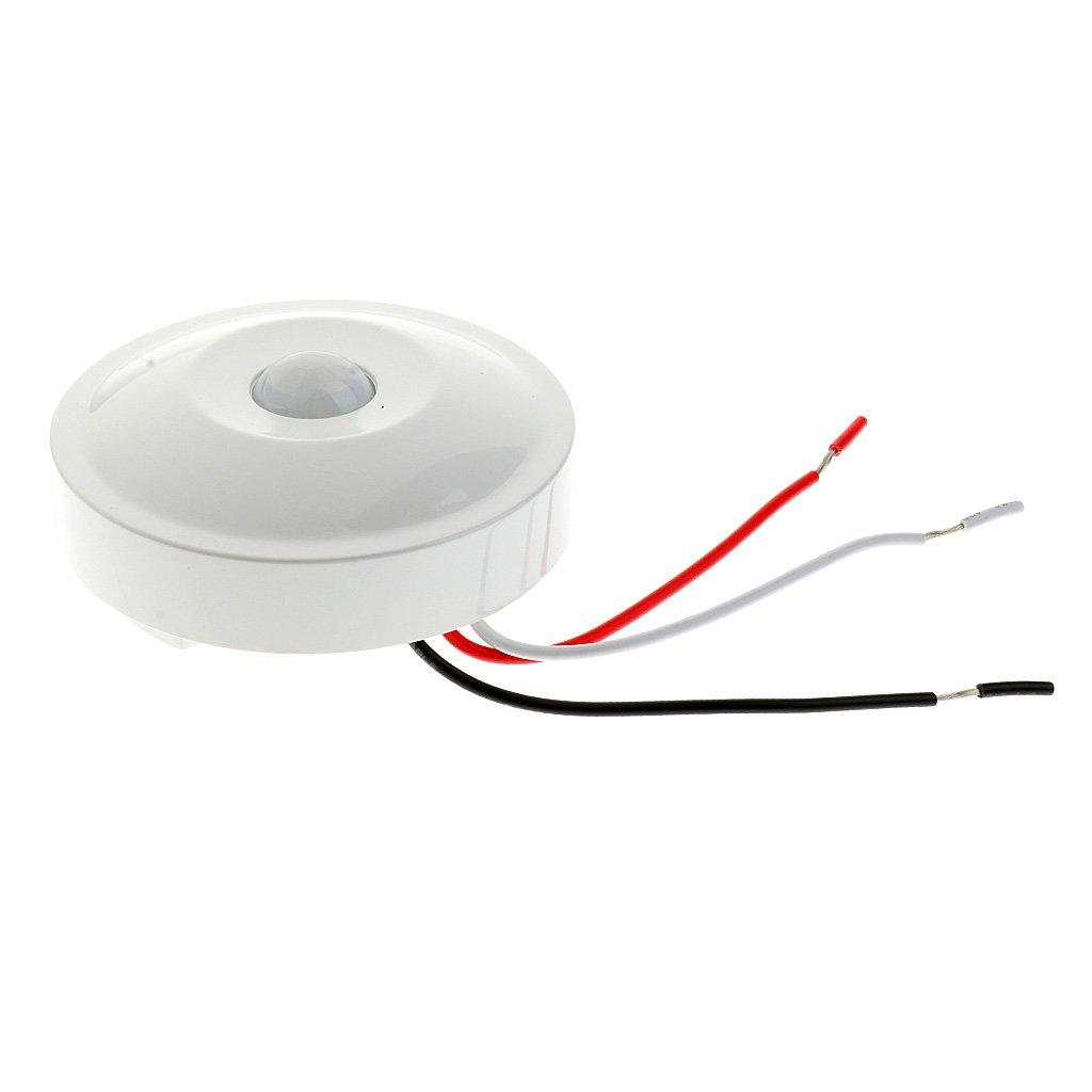 MagiDeal 220V Interruptor de Sensor Montaje Superficial PIR Ocupación de Techo Sensor de Movimiento Detector Identificar Día y Noche: Amazon.es: Hogar