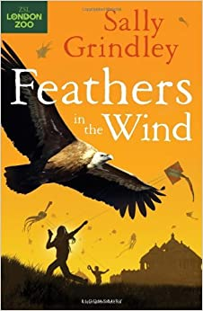 Book Feathers in the Wind (International Rescue) by Sally Grindley (2012-09-13)