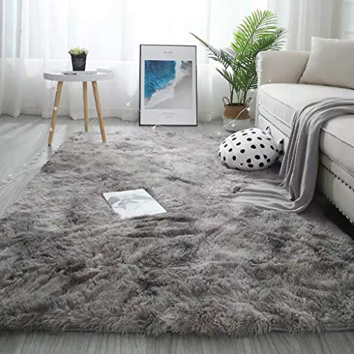 UIUYA Area Rug Plush Carpet Ultra Soft Indoor Fluffy Living Room Carpets Home Decor Rug