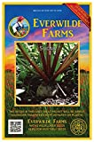 Everwilde Farms - 500 Sugar Beet Beet Seeds - Gold Vault Jumbo Seed Packet