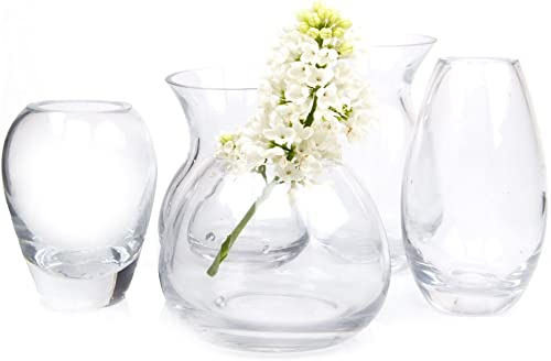 Chive – Set of 5 George Round and Oval Clear Glass Bud Flower Vase for Short Flowers, Handmade Glass Mixed Pack, Qty. 5pcs Total one of Each Shape