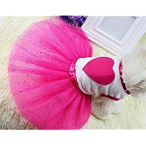 Idepet TM Spring Summer Pet Dog Cat Puppy Tutu Princess Dress Heart Printed Lace Skirt Clothes Pet Apparel (S)
