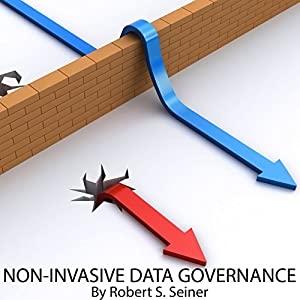 Non-Invasive Data Governance Audiobook