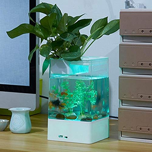 USB Desktop Mini Fish Tank With LED Light Aquarium   White, M