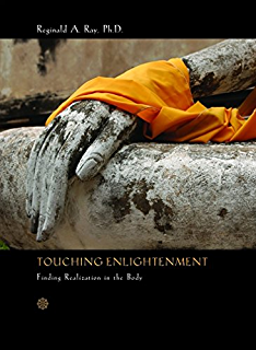 Amazon intelligence in the flesh why your mind needs your body touching enlightenment finding realization in the body fandeluxe Images