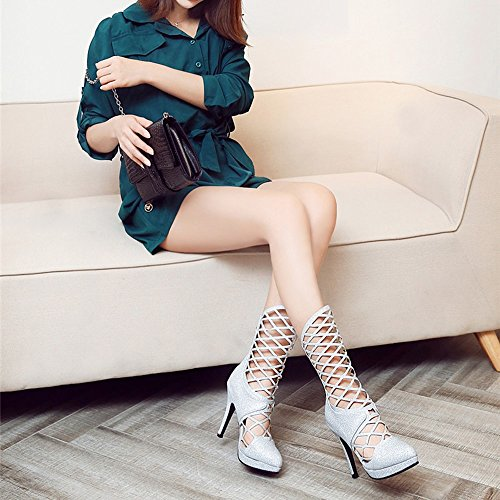 Sandals ZHIRONG Women's High Heels Pointed Waterproof Platform Hollow Zipper Rome Mesh Cool Boots 11CM (Color : Gold, Size : EU35/UK3/CN34) Silver