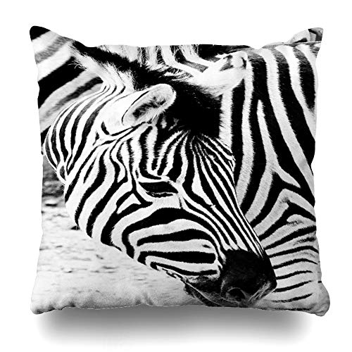 Suesoso Decorative Pillows Case 18 x 18 Inch Portrait Zebra High Black Africa Animal Black Fur Mammal Nature Throw Pillowcover Cushion Decorative Home Decor