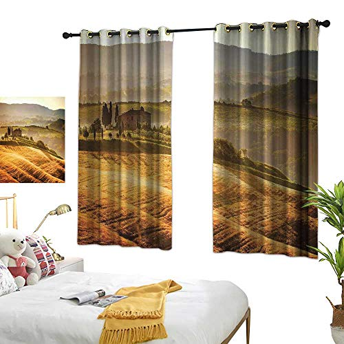 (Sheer Curtains Tuscan,Siena Tuscany Retro Farm House Trees Old Path Country Landscape on Sunset,Ginger and Green 72